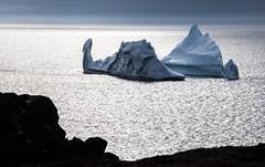 Shimmer (stevenbulman44) Tags: iceberg newfoundland 70200f28l interesting cold coastal bonavista ice silhouette shimmer water ocean shape outdoor spring holiday eastcoast pacific icebergalley