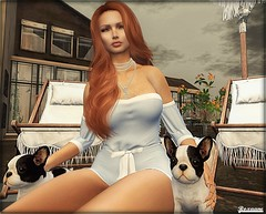 ► ﹌Dogs leave paw prints on your heart.﹌ ◄ (яσχααηє♛MISS V♛ FRANCE 2018) Tags: kaithleens c88 avatar artistic art roxaanefyanucci events collabor88 topmodel poses photographer posemaker photography models marketplace maitreya lesclairsdelunedesecondlife lesclairsdelunederoxaane girl fashion flickr france firestorm fashiontrend fashionable fashionindustry fashionista fashionstyle designers secondlife sl slfashionblogger shopping styling style virtual blog blogger blogging bloggers bento beauty