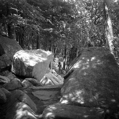 (patrickjoust) Tags: super ricohflex kodak verichrome pan 100 expired 1982 developed rodinal 150 tlr twin lens reflex 120 6x6 medium format black white bw home develop discontinued film blancetnoir blancoynegro schwarzundweiss manual focus analog mechanical patrick joust patrickjoust jordan pond acadia national park mt mount desert island maine me new england usa us united states north america estados unidos rural country forest woods trees llewelyn kid boy child rocks path hike hiking hiker
