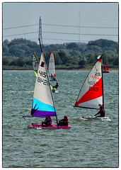 Sailing on the Solent (Missy2004) Tags: nikkorafs18140mmf3556gedvr 119picturesin2019 solent royalvictoriacountrypark sailing windoperated 116119