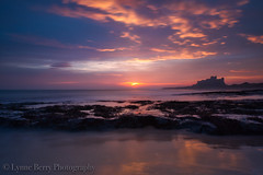 SWEET DREAMS........... (lynneberry57) Tags: bamburghcastle northumberland castle coast landscape seascape colours sunrise clouds sea tide rocks nature light beauty canon 70d leefilters pink silhouette