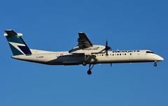C-GENK (WestJet Encore) (Steelhead 2010) Tags: westjet encore bombardier dhc8 dhc8q400 creg yyz