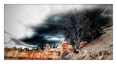 Brice Canyon (Jean-Louis DUMAS) Tags: paysage landscape landscapesdreams nature desert storm thunderstorm nuage sky orage usa bricecanyon rocher roche rock arbre tree