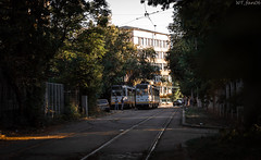 DSC_0103 (WT_fan06) Tags: bucharest bucuresti cityscape tramway tramvai v3a oldtimer retro vintage urban street sunset photography orange sun light glow perspective contrast shadows focus nikon d3400 dslr 50mm