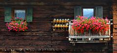 Essenze (soldato ribelle) Tags: livigno colours colori montagna mountain essenze essences