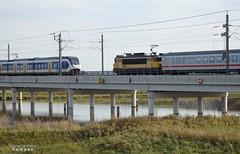 P821 2419-IC241 (HenryTransport) Tags: trein treinen trains railways spoor spoorwegen kampen hanzelijn