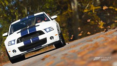 Ford Shelby GT500 (PixelGhostClyde) Tags: forza motorsport horizon fh4 turn 10 studios t10 playground games pg microsoft xbox one xb1 xbone x xb1x community photo contest gallery grab