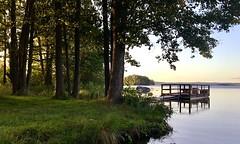 By the Lake Varpan💦 (halleluja2014) Tags: bridge summer lake strand evening pier sweden august dalarna falun alder brygga sjö bergslagen alar blackalder varpan aldertrees klibbal sensommar