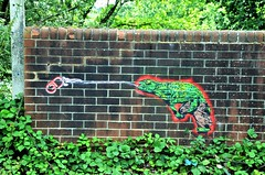 Lizard.... (stavioni) Tags: grid street art grafitti stencil paint wall lizard basingstoke canal