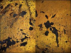 0030036 (onesecbeforethedub) Tags: vilem flusser technical images onesecbeforetheend onesecbeforethedub onesecaftertheend photoshop multiple exposure collage malta edinburgh contemporaryart streamofconsciousness details diptych rust decay industrial anthropomorphism anthropocene