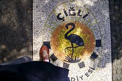 Flamant (Atreides59) Tags: berlin allemagne deutschland germany street rue urban urbain pied foot pieds feet pentax k30 k 30 pentaxart atreides atreides59 cedriclafrance jaune yellow