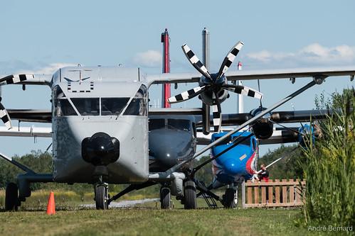 Flickriver: Skydiving Aviation pool