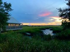Florida   -   Anastasia Island   -   Saltwater Cowboy's