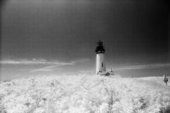 Yaquina Head Lighthouse (bac1967) Tags: infrared kodakhie hie blackandwhitefilm blackwhite blackandwhite monochrome monotone oregon oregoncoast minoltasrtscii minolta slr slrcamera pnw pacificnorthwest rodinal rodinal150 expiredfilm expired redfilter tamronadaptall2 tamron 24mmlens yaquinaheadlighthouse yaquinahead lighthouse infraredfilm or pacificcoast pacific