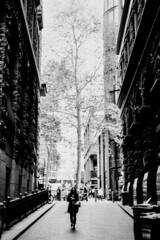 Sydney (Bill Thoo) Tags: film filmphotography analog analogue filmcamera blackandwhitefilm 35mm 35mmfilm sydney angelplace nsw newsouthwales australia urban city street grunge 35mmfilmcamera monochrome bnw bw blackandwhite kodak 2238 kodak2238 olympus om1 zuiko 50mm 5014 rodinal r09 standdevelopment semistanddevelopment