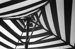 Table umbrella (Matthew Paul Argall) Tags: canonsnappy20 fixedfocus 35mmfilm blackandwhite blackandwhitefilm umbrella tableumbrella kentmerepan100 100isofilm