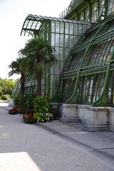 Palmenhaus, Schloss Schönbrunn, Wien (AWe63) Tags: palmenhaus schönbrunn schloss wien österreich pentax pentaxk1mkii cawe63