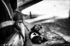 Les essentiels...! /  The essentials...! (vedebe) Tags: chiens animaux ville city rue street urbain urban soldats soldat bouteille noiretblanc netb nb bw monochrome libération fête américains provence aixenprovence casque guerre deuxièmeguerremondiale armée