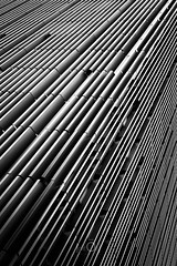 Hachures (CrËOS Photographie) Tags: blackandwhite bw france lines architecture modern perspective moderne lille lignes abstact abstrait