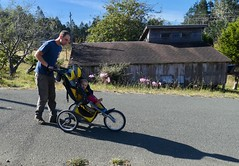 Morning Walk (Room With A View) Tags: www dad baby stroller odc