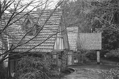 Tatra Receptions (photo 3) (Matthew Paul Argall) Tags: smenasymbol 35mmfilm kentmerepan100 100isofilm blackandwhite blackandwhitefilm architecture building