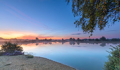 Mist Rising (nicklucas2) Tags: landscape newforest stoneycross sunrise contrail cloud andrewsmare pond reflection water tree mist