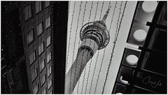 Rain and Sparkles (cjhall.nz) Tags: 35mm x100f fujifilm fairylights artistic art sky bw bnw blackandwhite streetphotography architecture federalstreet city street lookingup auckland skycity skytower