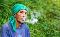 Bonifacio smoking tobacco leaves (vincent.lecolley) Tags: asia philippines asian man worker smoking smoke green look portrait culture nikon 50mm 18