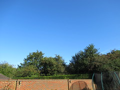 Thursday, 22nd, Fair weather IMG_6749 (tomylees) Tags: kent morning summer august 22nd 2019 thursday weather sky blue