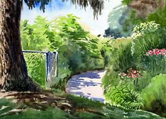 Rosetta McClain Garden, Plein Air, 2019-08-21 (light and shadow by pen) Tags: watercolorlandscaperosettamclaingarden arttorontopark