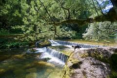Au fil de l'Orbe (Lionoche) Tags: orbe gorgesdelorbe paysagedesuisse switzerland swisslandscapes river rivière cantondevaud