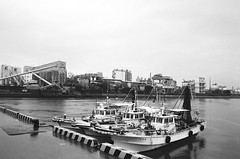 61450026 (yam01234567890123456) Tags: contax contaxg1 biogon28mm oriental newseagull100