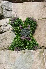 Wreath,William Wallace Statue,Rosemount Viaduct,Aberdeen_aug 19_780 (Alan Longmuir.) Tags: grampian aberdeen rosemountviaduct williamwallacestatue wreath
