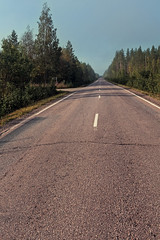 Empty Road On A Misty Morning (k009034) Tags: copyspace europe finland outdoors ruralscene tranquilscene country countryroad countryside crossing empty fog forest idyllic landscape lane line mist morning nature nopeople road rural sign sky summer traffic transportation