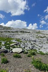 Hike to Désert de Platé (*_*) Tags: 2019 summer ete august afternoon hiking loop circuit mountain montagne nature randonnee trail sentier walk marche limestone calcaire lapiaz pavement desertdeplate giffre faucigny flaine france europe alps hautesavoie 74 savoie