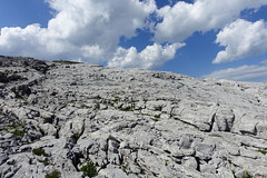 Limestone pavement @ Hike to Désert de Platé (*_*) Tags: summer 2019 mountain nature montagne afternoon loop hiking walk august trail limestone circuit sentier marche ete randonnee france europe pavement 74 flaine hautesavoie calcaire giffre lapiaz désertdeplaté faucigny savoie