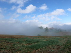 rising (Rosmarie Voegtli) Tags: morningwalk hiking dornach landscapes mist fog