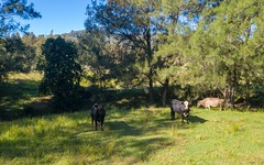 49 Dog Trap Creek Road, East Gresford NSW