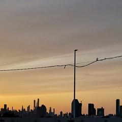 on our way (maximorgana) Tags: sunset thecity newyork backlight skyline empirestatebuilding sun huisvanoranje