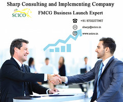 Business Launch Company (scico2019) Tags: business relaunch specialist consultant new launch sales restructuring expert