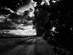 Landscapes of my Soul (I) (Maximilian Busl) Tags: sky blackandwhite clouds dark landscape bayern deutschland moody horizon wideangle hasselblad seren haida contemplation 500cm gnd töpen cfv50c