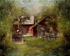 In forest (Birgitta Sjostedt) Tags: old house cottage hidden forest creation texture paint fence tree fairy fairytale