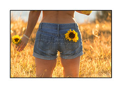 Girl wearing denim shorts holding sunflower in a sunny field (sugarbellaleah) Tags: sunny denim shorts girl female woman flower floral petals sunshine happy fun outdoors australia culture lifestyle summer spring hot holding love peace goodness wellness healthy life lifestle bare skin sexy pocket grass leisure recreation meadow field water bright sunflowerseeds nature natural real realpeople fashion