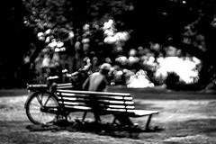 when the magic begins (Gerrit-Jan Visser) Tags: amsterdam bence bicycle blackandwhite bnw bokeh light magic man park wood blur dream reality fiction helios 85mm