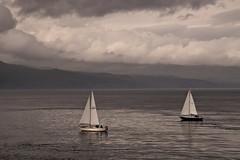 Sound of Mull 2 (chris-parker) Tags: mull iona scotland beach rocks sand yacht sunset sea pinks seaweed sailing ship traigh ban boat rockpool puppy cal mac caledonian macbrayne