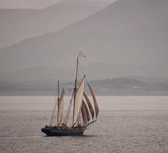 Oban sailing ship 2 (chris-parker) Tags: mull iona scotland beach rocks sand yacht sunset sea pinks seaweed sailing ship traigh ban boat rockpool puppy cal mac caledonian macbrayne