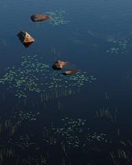 Muddus Nationalpark II (Gustaf_E) Tags: forest kväll lake landscape landskap lappland mosse muddus muddusnationalpark myr nationalpark norrland näckros rocks sjö skog sommar stenar stones sverige sweden urskog woods