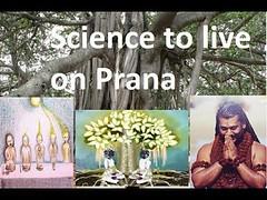 Mystic Science to Live on Prana by Paramahamsa Nityananda (Enough of Humans) Tags: nithyananda paramashiva paramashivoham swamiji bhagwan enlightenment nlighten hinduism avatar livingenlightenment aghora aghori liberation varanasi kasi shiva kalabhirava moksha anugragha simplifyit freedomofspeech religiousfreedom spiritual powers