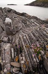 Rocks nr Uisken, Mull (chris-parker) Tags: beach scotland iona mull sunset sea seaweed puppy boat mac sand rocks sailing ship yacht cal ban pinks caledonian rockpool macbrayne traigh