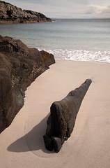 Mull beach 2019 1 (chris-parker) Tags: mull iona scotland beach rocks sand yacht sunset sea pinks seaweed sailing ship traigh ban boat rockpool puppy cal mac caledonian macbrayne
